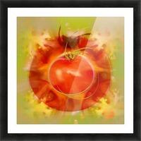 Illustration Of Tomato Picture Frame print