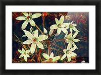 WhiteDarkWallflowers Picture Frame print