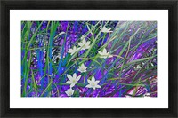 blueeweeds Picture Frame print
