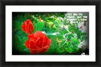 life Picture Frame print