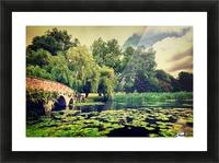 Zen Meditation Lily Pond Picture Frame print