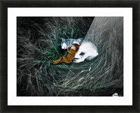 Unison with nature 2. Picture Frame print