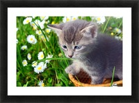 Smell the grass Picture Frame print