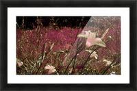 olderpicsummer22 Picture Frame print