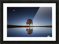 Reflection tre Picture Frame print