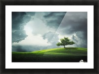 Lonely Tree, birds Picture Frame print