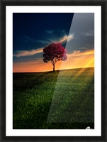 Awesome Solitude Picture Frame print