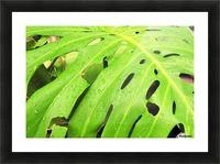 Nevis GR7 Picture Frame print