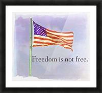 freedomIsnofree Picture Frame print
