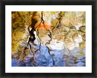 Elementals, Massachusetts, Seekonk, Caratunk Wildlife Refuge, Colorful Glassy Reflections On Water. Picture Frame print