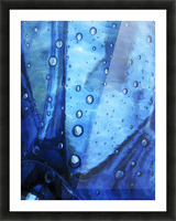 Trickster, Massachusetts, Seekonk, Caratunk Wildlife Refuge, Extreme Close-Up Of Water Droplets On Blue Surface. Picture Frame print