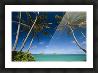 USA, Hawaii, Oahu, Palm tree over Pacific ocean with Mokulua island in background; Lanikai Picture Frame print