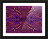 Butterfly Flight Picture Frame print