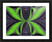 Green Butterfly 3 Picture Frame print