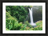 Hawaii, Big Island, Hilo, Wailuku River State Park, Rainbow Falls, Flowers And Greenery In Foreground. Picture Frame print