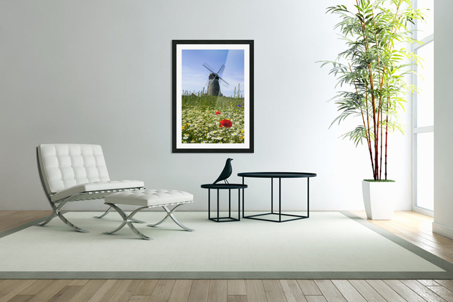 A windmill against a blue sky and cloud with a field of wildflowers in the foreground; Whitburn, Tyne and Wear, England in Custom Picture Frame