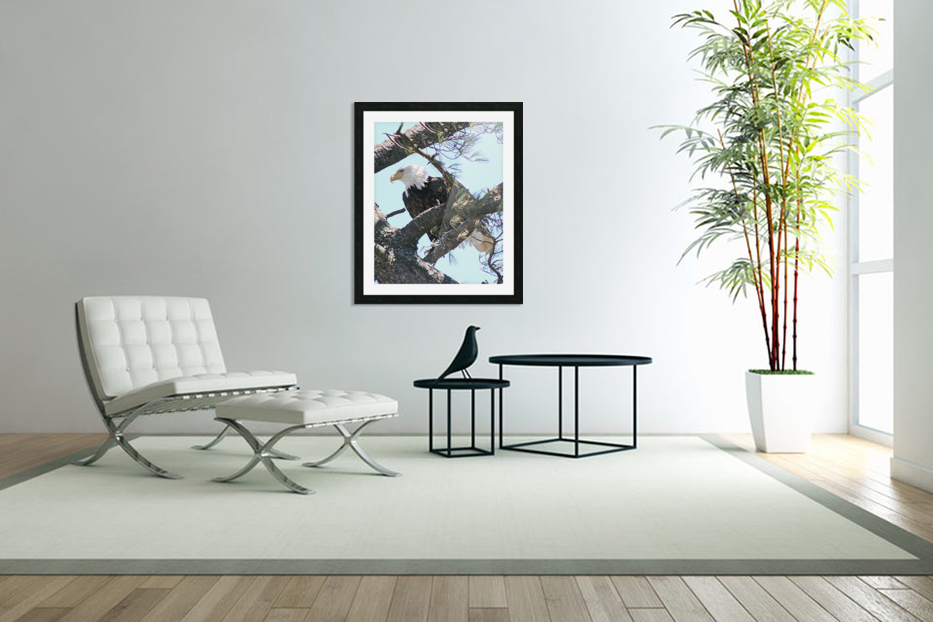 Watchful in Custom Picture Frame