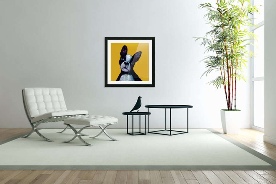 BOSTON TERRIER ON YELLOW in Custom Picture Frame
