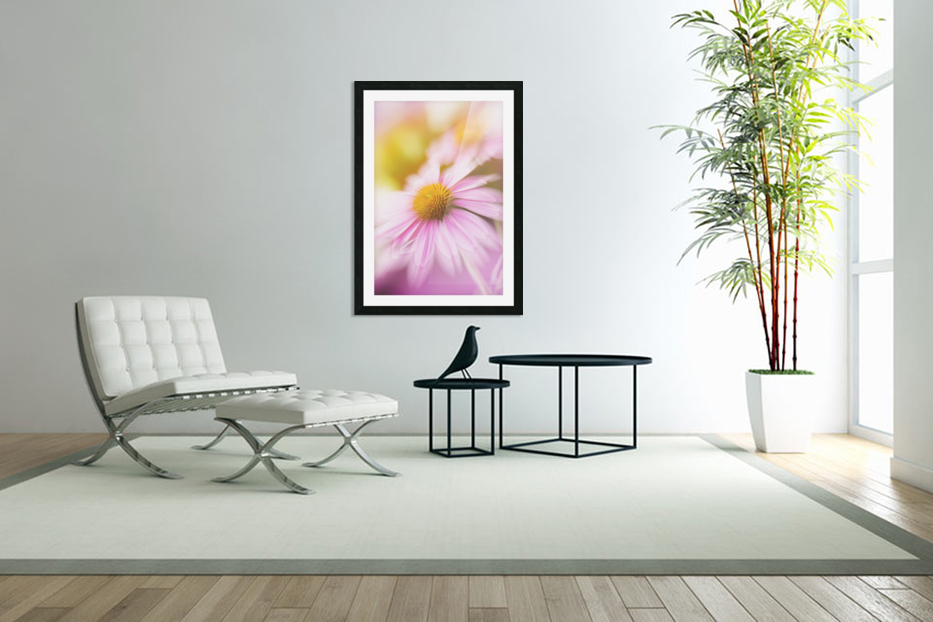 Dreamy Pink Coneflower  in Custom Picture Frame