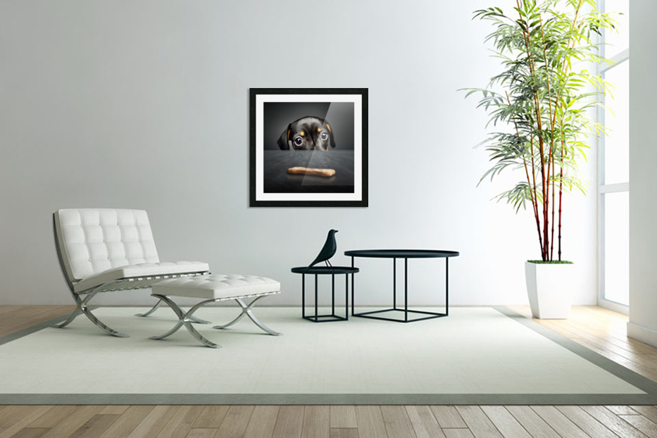 Puppy longing for a treat in Custom Picture Frame