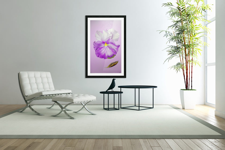 Purple Pansy in Custom Picture Frame