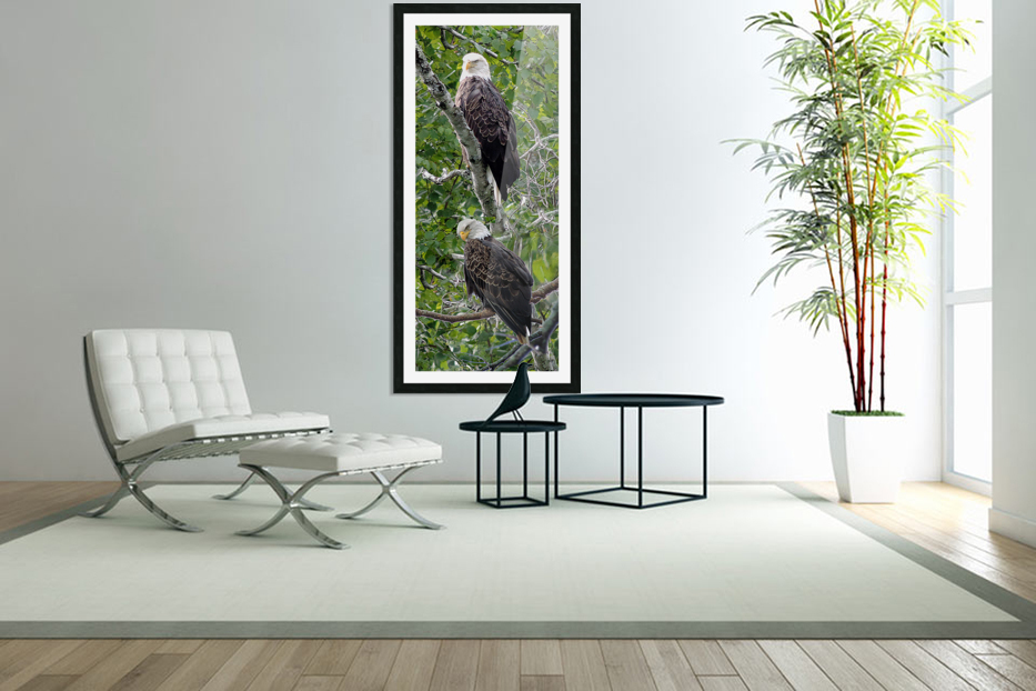 Watchful1 in Custom Picture Frame