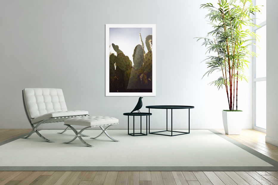 Saguaro Golden Hours 3 in Custom Picture Frame