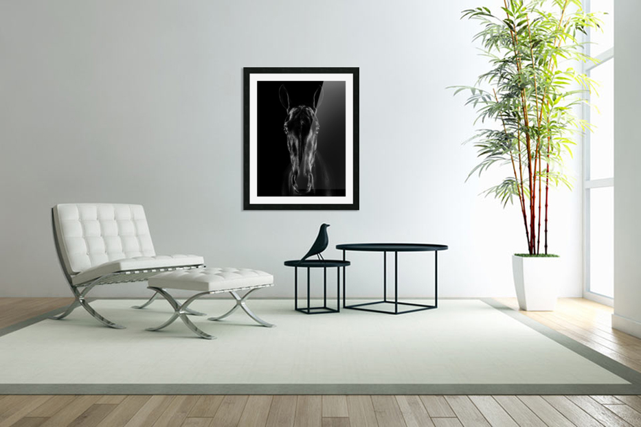 The Horse in Noir in Custom Picture Frame
