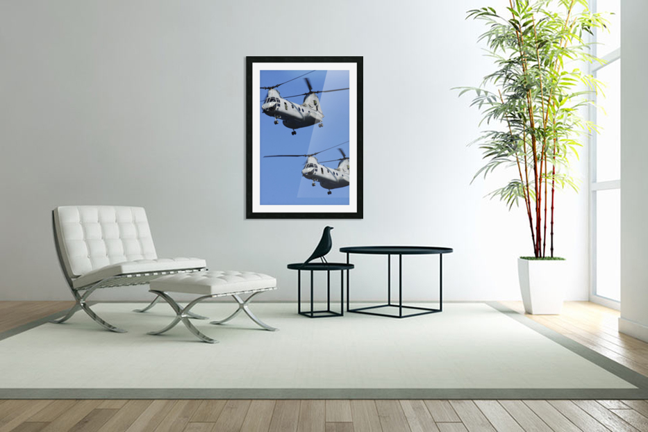 Two U.S. Marine Corps CH-46E Sea Knight helicopters in flight. in Custom Picture Frame