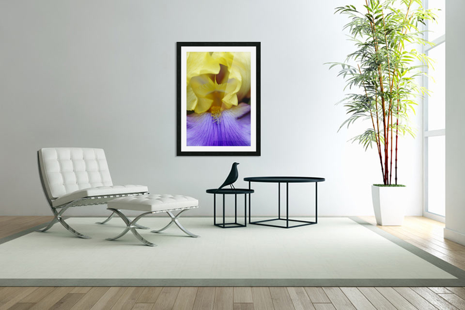Lavender And Yellow Iris Heart in Custom Picture Frame