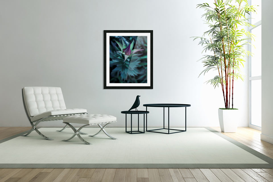 Funky flora in Custom Picture Frame