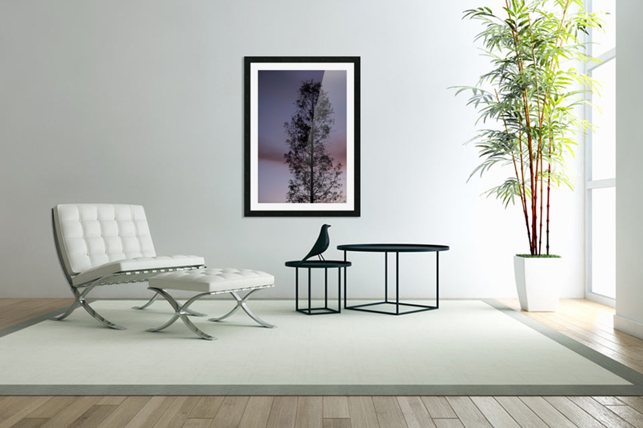 Tall Tree at Dawn in Custom Picture Frame