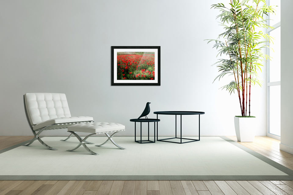 Rolling Fields with Poppies in Custom Picture Frame