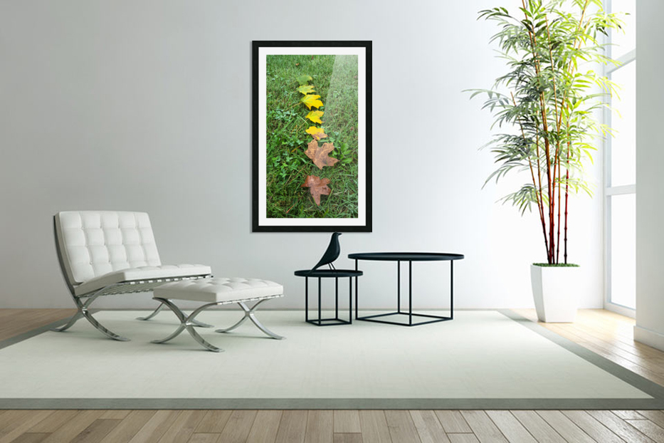 Stages of Life in Custom Picture Frame