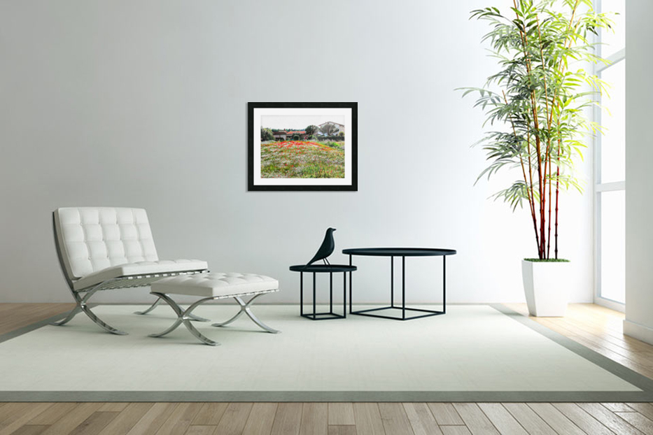 Old Farm House With Poppies in Custom Picture Frame