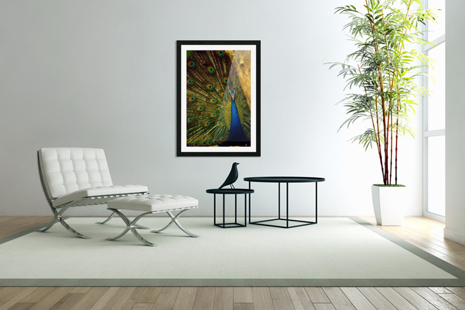 blue and green peafowl in Custom Picture Frame