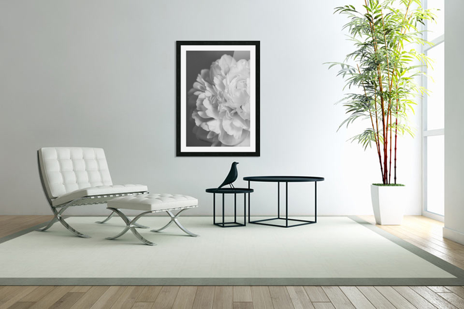 Peony in Black & White in Custom Picture Frame