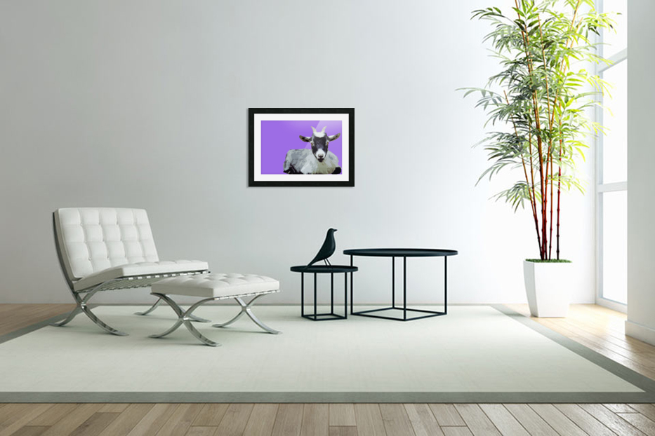 Goat popart purple in Custom Picture Frame