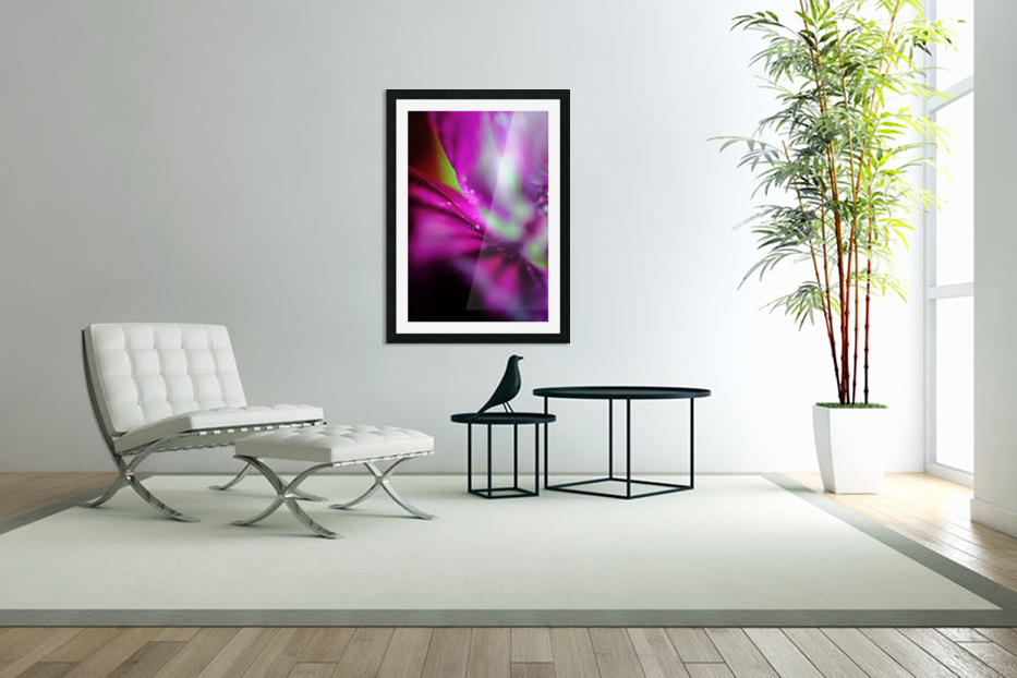Abstract Pop Color Flower Photography 05 in Custom Picture Frame