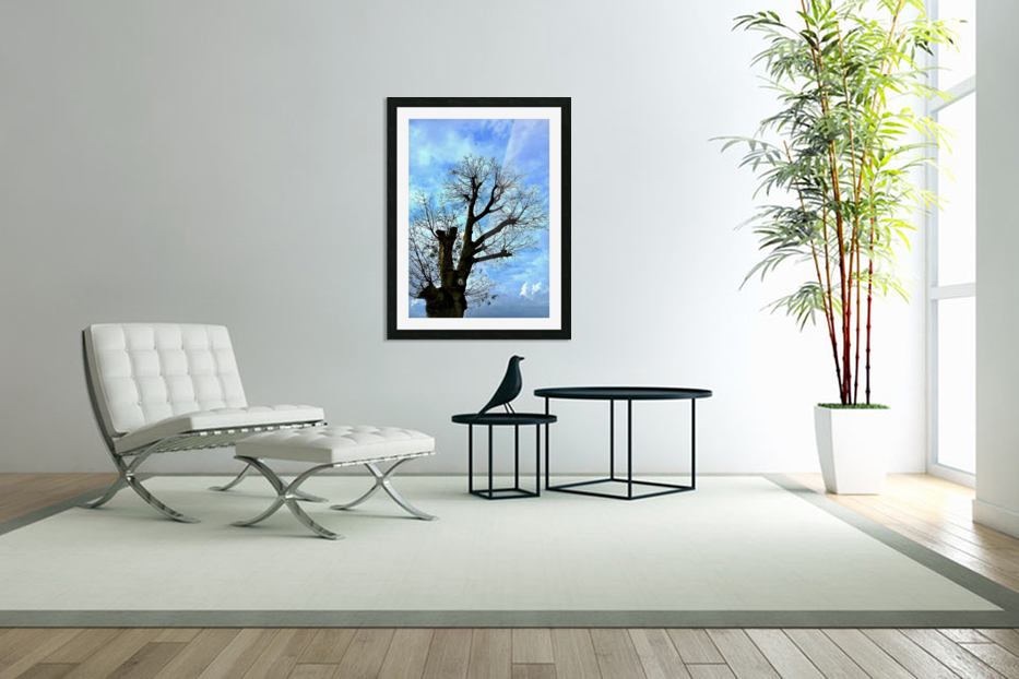 Tree Without Leaf in Custom Picture Frame
