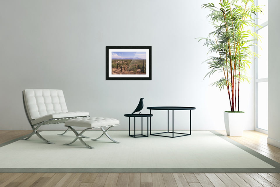 Sonora Desert Landscape Arizona Photograph in Custom Picture Frame