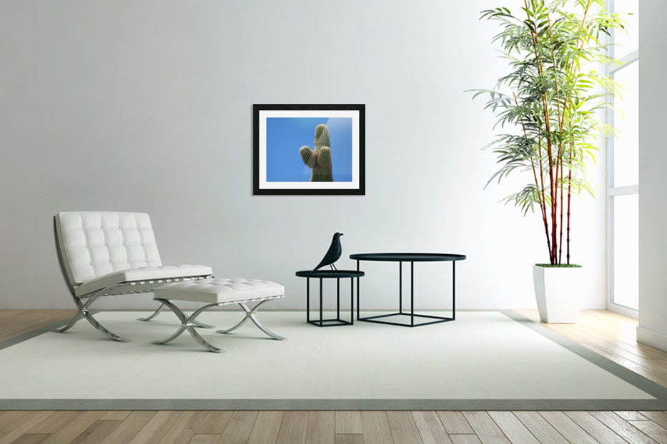 Saguaro Cactus Cradling A Birds Nest Photography in Custom Picture Frame