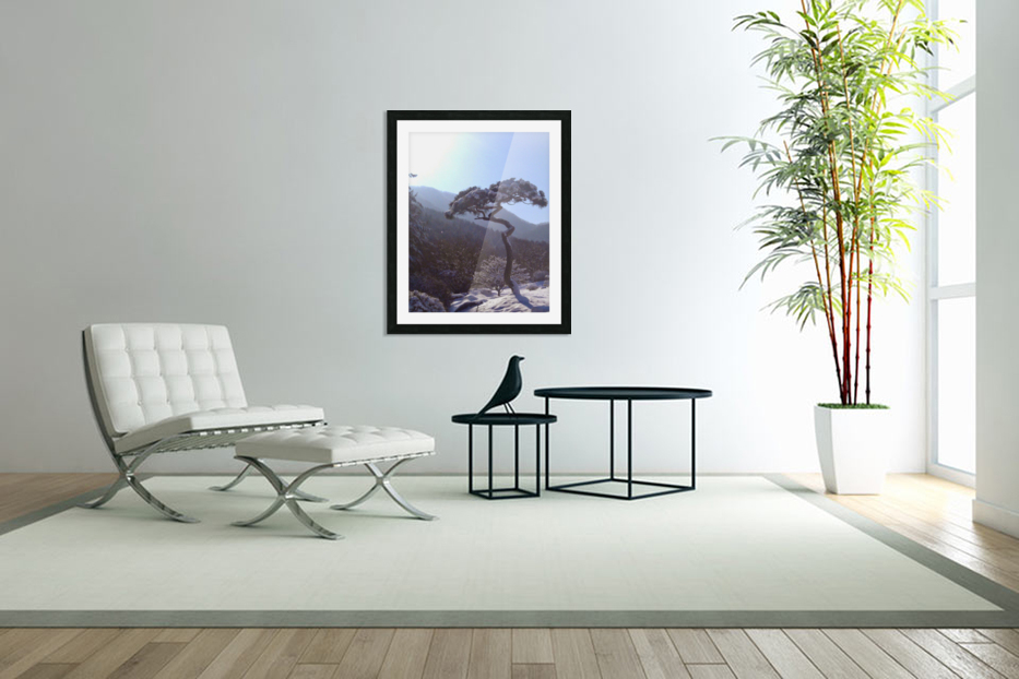 Tree in Snow in Custom Picture Frame