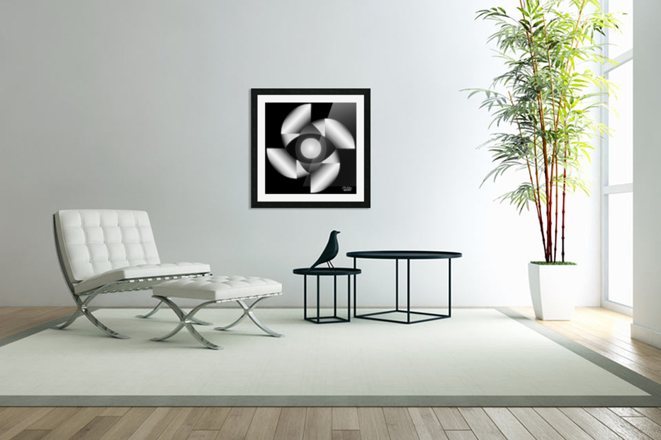 1-Golden Ratio B&W in Custom Picture Frame