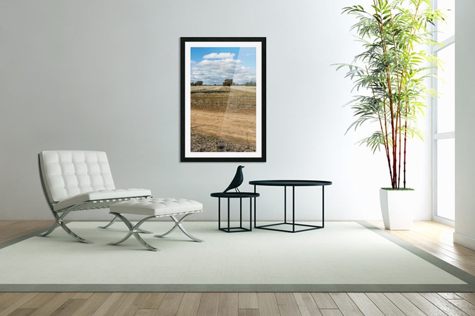 Stubble fields post harvest against blue sky and clouds. in Custom Picture Frame