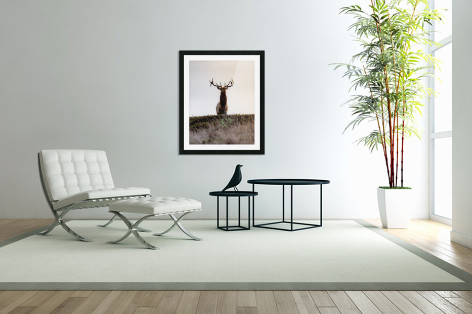Tule Elk On Top Of A Hill in Custom Picture Frame