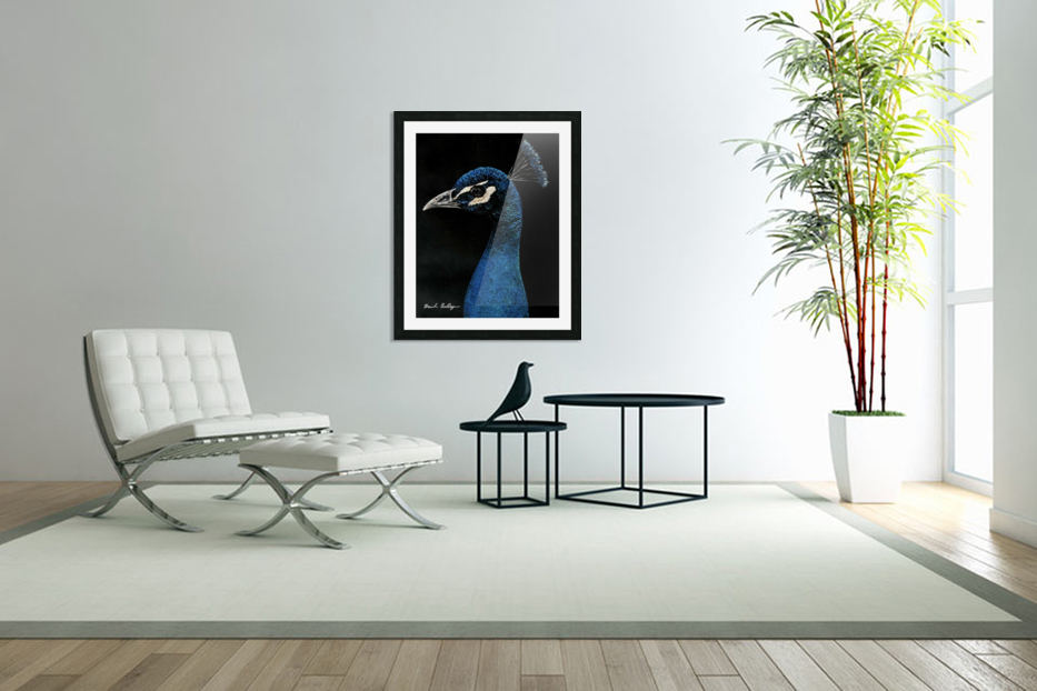 Peacock Portrait in Custom Picture Frame