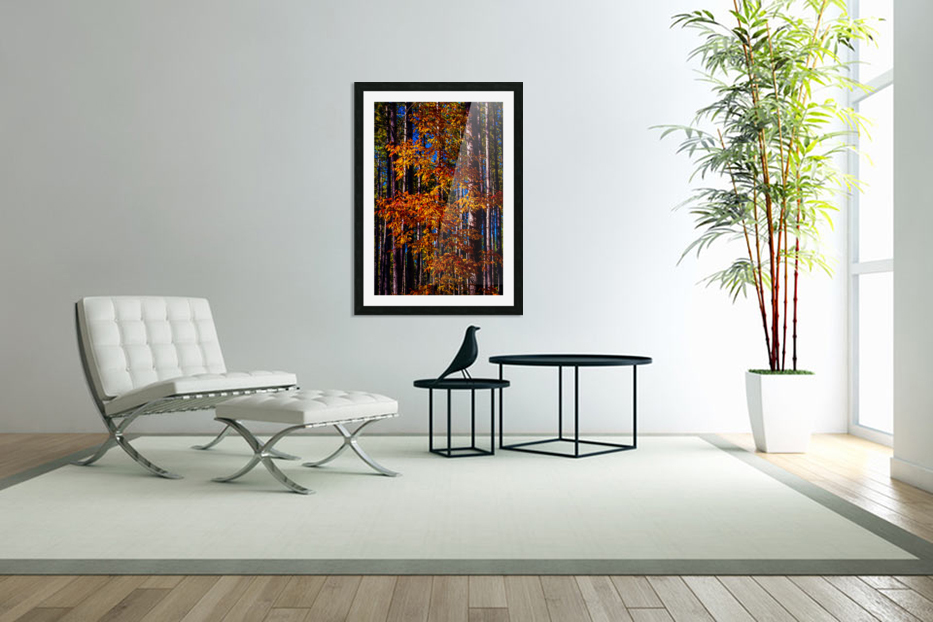 Autumn Fire in Custom Picture Frame