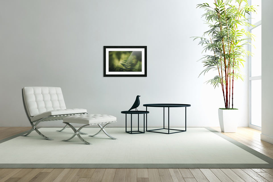 Green as the fern  in Custom Picture Frame