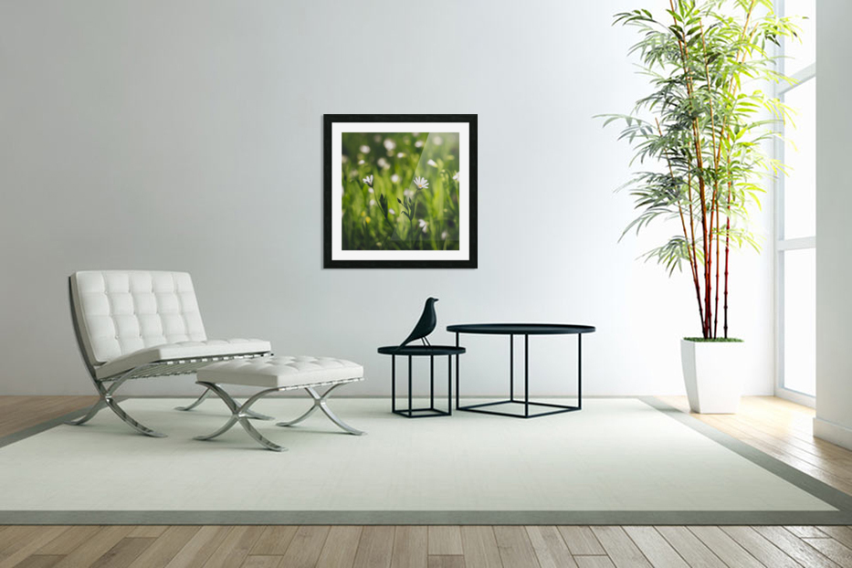White on green in Custom Picture Frame